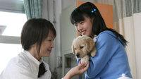 20071115_inutowatashi_sub3